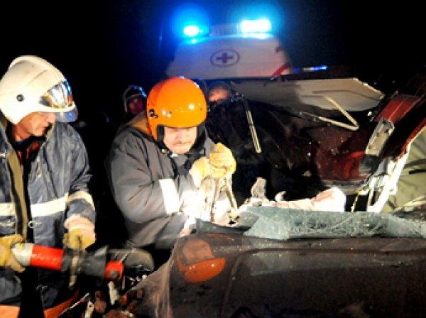 15 человек стали жертвами ДТП с микроавтобусом в Марий Эл