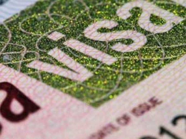 Медведев утвердил в России новый тип въездной визы