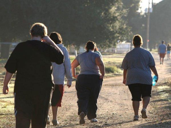 СМИ сообщили о росте числа россиян с ожирением