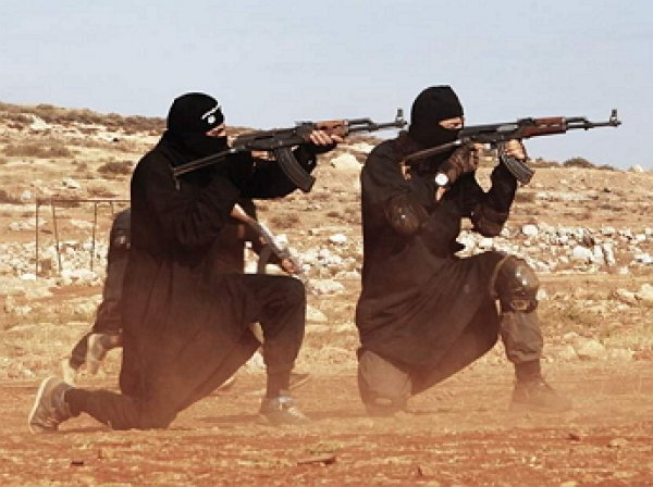 США готовит новую армию из остатков боевиков ИГ в Сирии