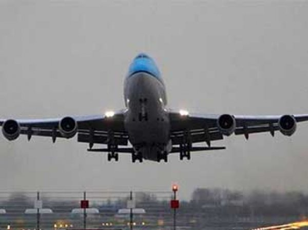СМИ: египетский самолет чудом не разбился при посадке в Домодедово