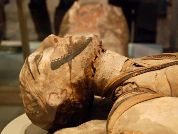 Ученые обнаружили рак у древнеегипетской мумии