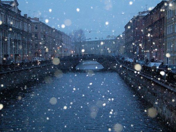 В Питере выпал синий снег