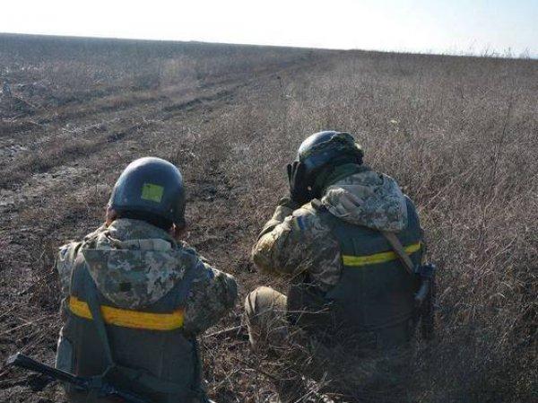 Пограничники рассказали, почему украинский военный попросил убежища в России
