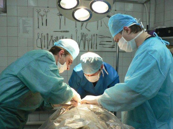 В Бурятии хирурги вытащили из желудка пенсионерки десятки гвоздей, шурупов, шпингалеты и серебряную цепочку