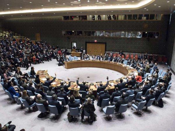 """""""Бурунди пока с нами. Все норм"""": соцсети отреагировали на признание РФ страной-оккупантом в ООН"""