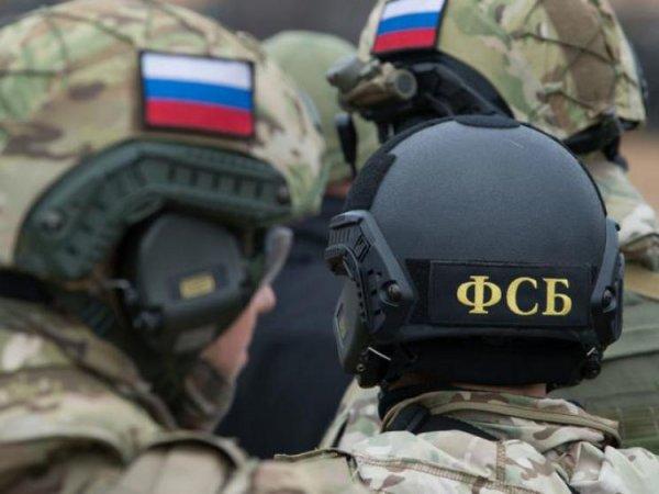 В ФСБ рассказали о предотвращенном теракте на Новый год