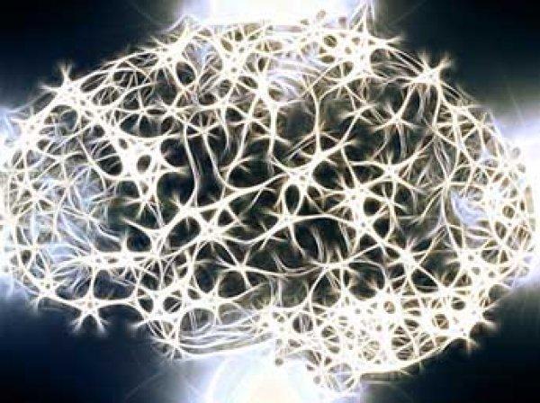 Ученые показали на видео, как движутся мысли в мозге человека