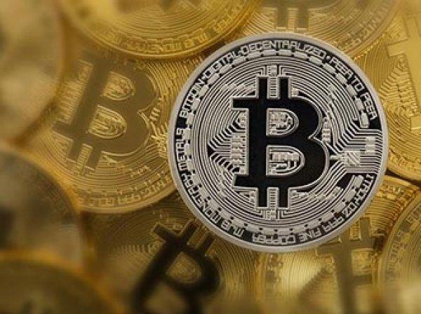Минтруд разрешил чиновникам не декларировать криптовалюту