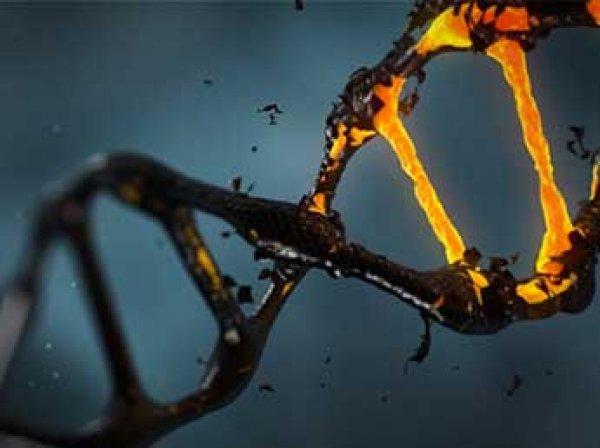 """Ученые сумели """"оживить"""" геном человека, умершего в 1827 году"""