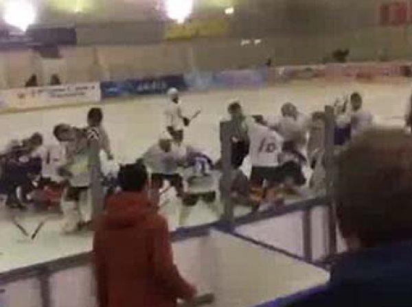 Дети устроили массовую драку на хоккейном матче во Владикавказе