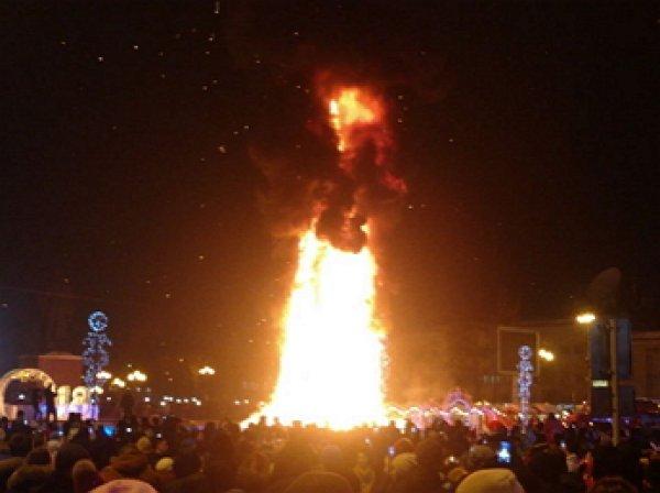 Названа причина возгорания главной  елки Южно-Сахалинска