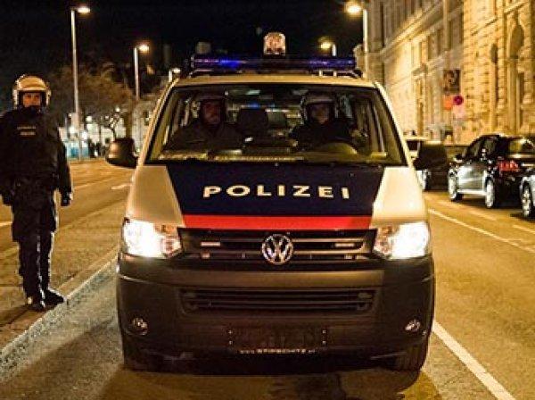 В Вене украли трехлетнюю девочку из России
