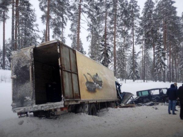 Жертвами ДТП в Ленинградской области стали 9 человек
