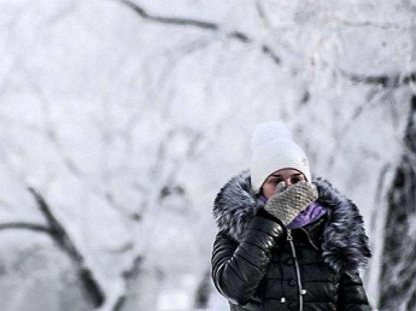 """Синоптики: Москву накроет арктический """"мешок холода"""""""