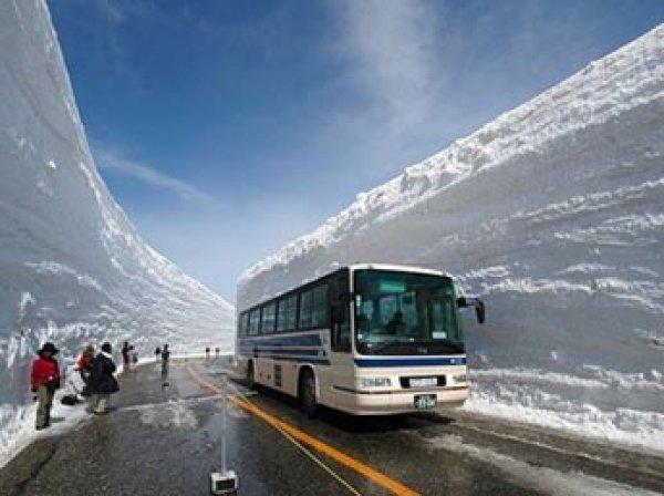 В Японии семь человек погибли из-за снегопада, еще 70 ранены