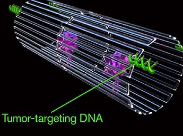 Ученые создали нанороботов, способных уничтожать раковые опухоли