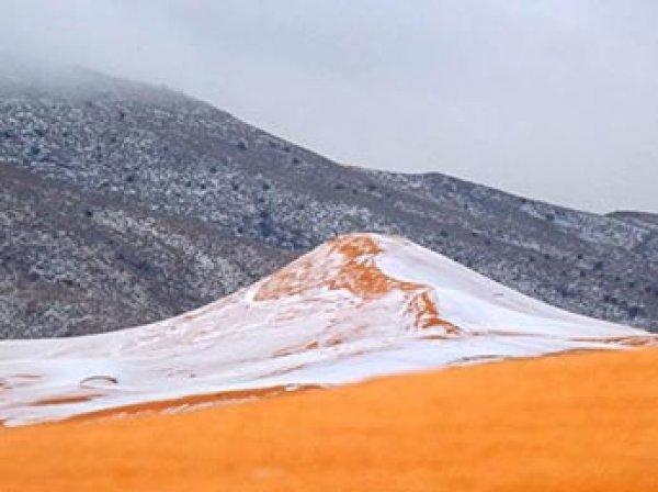 Пустыню Сахару второй раз за зиму покрыли сугробы