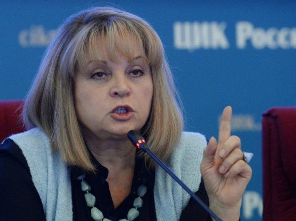 ЦИК: половина кандидатов в президенты РФ указали недостоверные сведениях о доходах