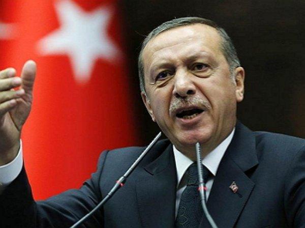 СМИ: Эрдоган предупредил Путина о будущем Сирии
