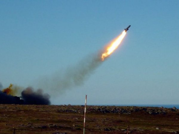 """""""Ватник"""", """"Песец"""", """"Нежданчик"""": Минобороны выбирает название для новой крылатой ракеты"""