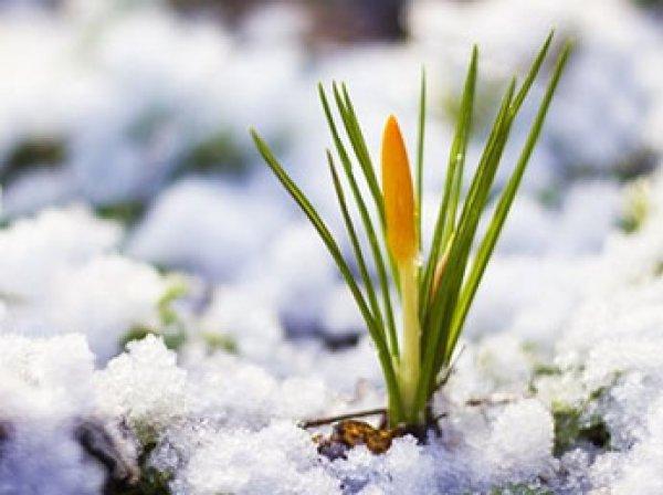 В Московском планетарии рассказали, когда в России наступит астрономическая весна