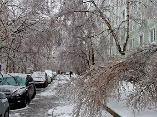 """Синоптики: в Москву придут """"январские морозы"""" и ледяные дожды"""