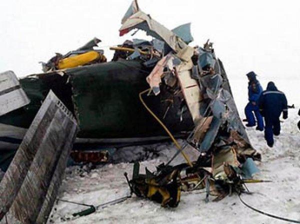 """""""Запах как мясном цехе"""": части тел жертв крушения Ан-148 под Москвой до сих пор разбросаны по полю"""
