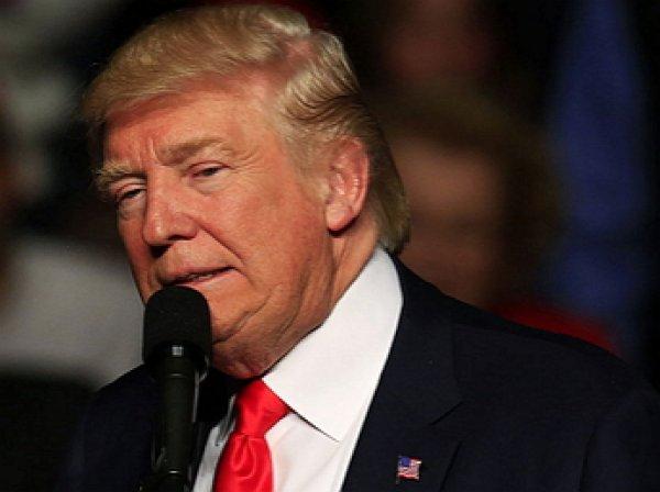 Трамп в течение 48 часов примет решение о возможном ударе по Сирии