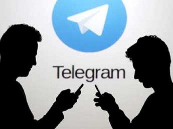 Песков и Дворкович признались, что у них работает Telegram