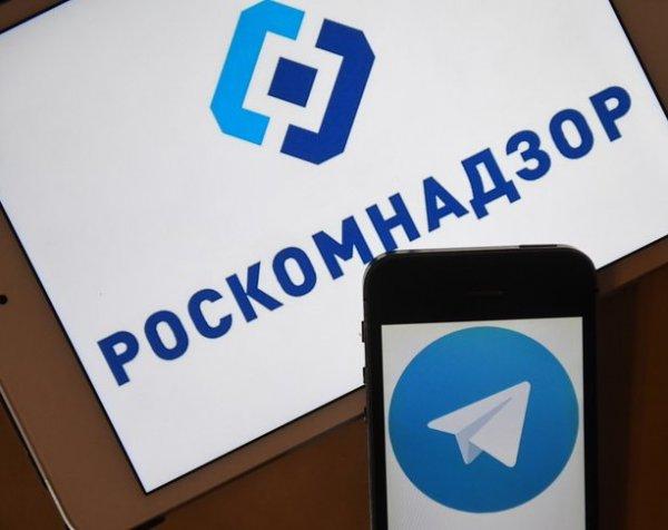 Интернет-омбудсмен признал невозможность блокировки Telegram