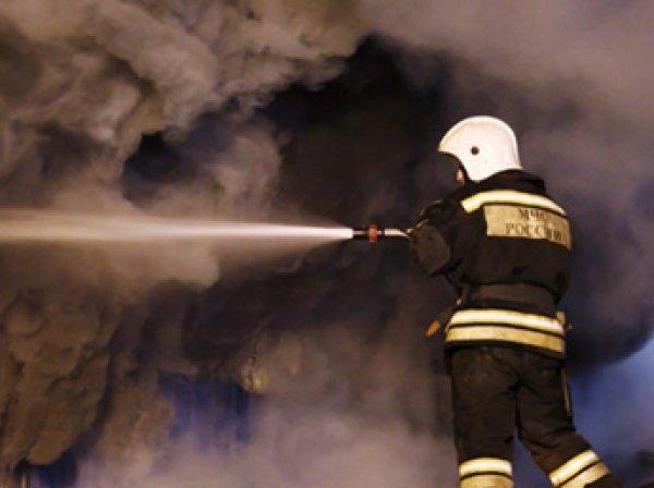 В Электростали взорвался цех завода по производству топлива для АЭС