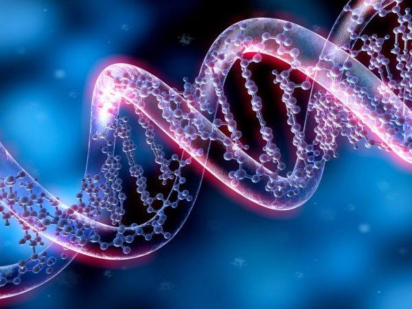 """Ученые раскрыли секрет """"темной материи"""" ДНК"""