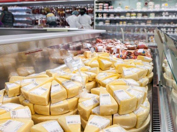 Эксперты выяснили, какой сыр в России опасен для здоровья