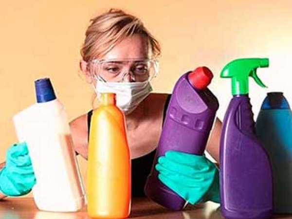 """Найдены """"неубиваемые"""" бактерии, питающиеся обычными чистящими средствами"""