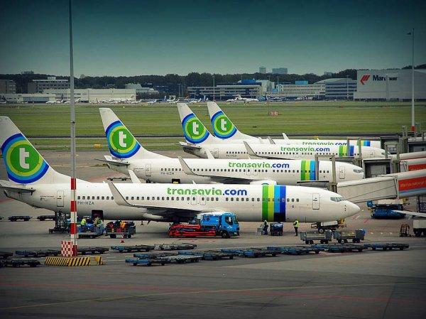 СМИ: в Португалии экстренно сел самолет из-за дурно пахнущего мужчины