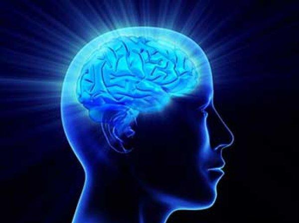 Ученые установили факт резкого  снижения интеллекта у человечества