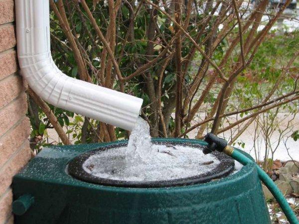 В Пермском крае ввели налог на дождевую воду