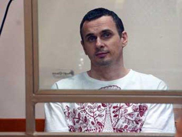 Сокуров, Познер, Хаматова и Учитель попросили Путина помиловать Сенцова