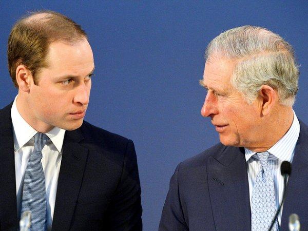 СМИ: принцы Чарльз и Уильям отказались встречаться с Трампом