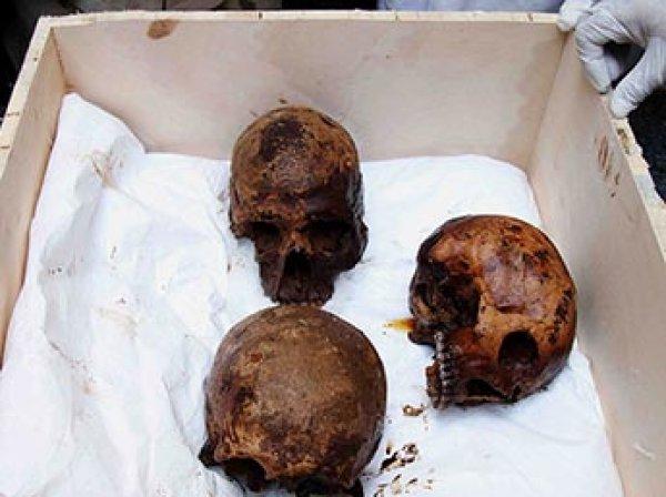 Ученые выяснили, кому принадлежат найденным в черном саркофаге в Александрии мумии