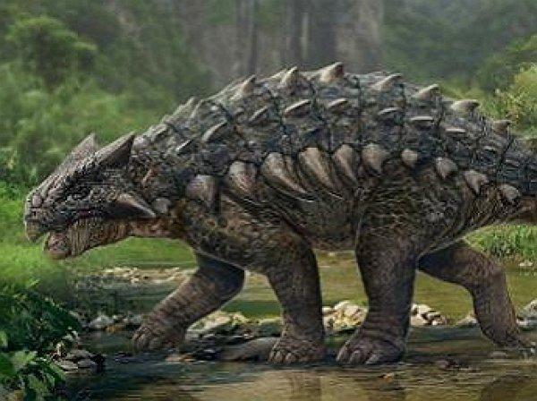 В США открыли новый вид динозавра