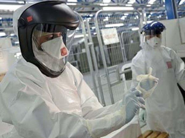 Во Франции человек впервые в мире заразился птичьим вирусом Усуту