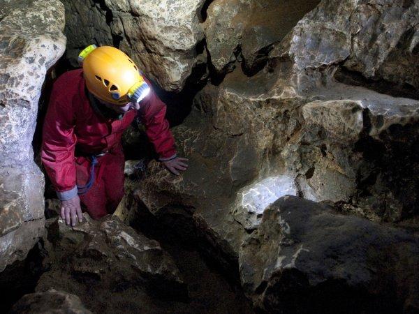 Из пещеры в Таиланде спасены 4 школьника. Маск тестирует подлодку для спасения остальных детей