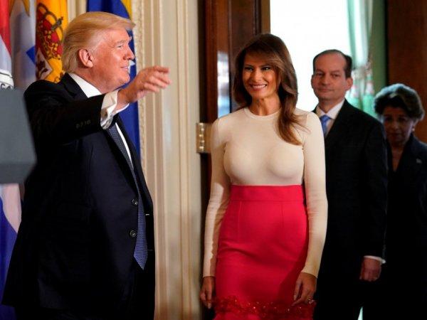 """ИноСМИ: Меланья Трамп нарочно выставляет мужа идиотом """"бунтарскими"""" нарядами"""