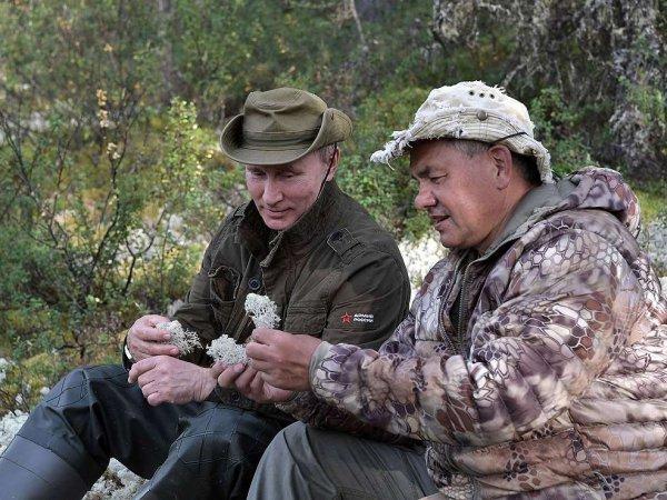 Видео отдыха Путина в Туве с Шойгу и Бортниковым появилось в Сети: соцсети не прошли мимо