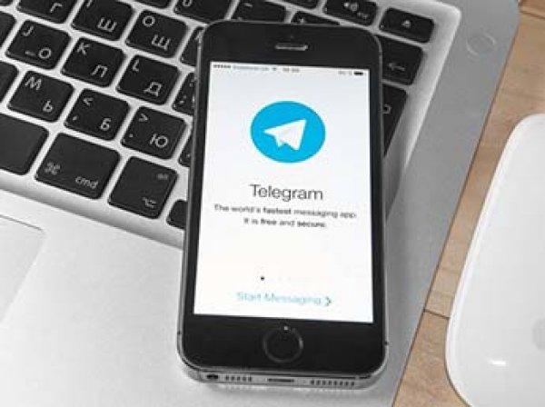 Telegram готов раскрыть IP-адреса террористов