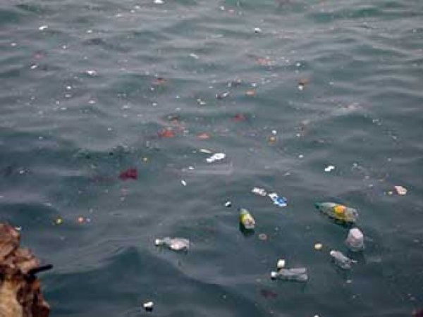 Ученые назвали самый опасный для мирового океана бытовой мусор