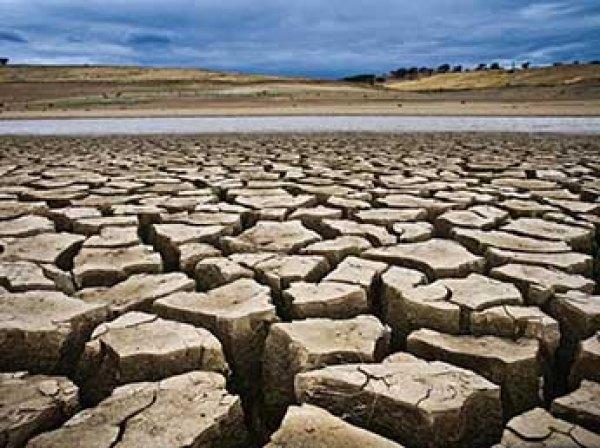 """Минприроды обнародовало сценарий """"климатического апокалипсиса"""" в России"""