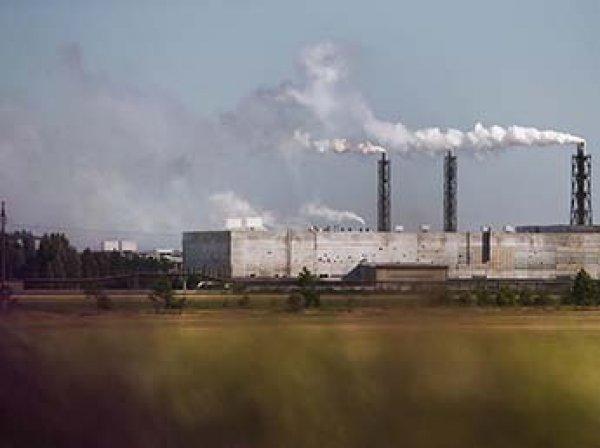 Выброс неизвестного вещества в Армянске: в Крыму экологическая катастрофа убивает животных и урожай (ВИДЕО)